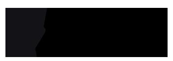 Fiinikuva logo
